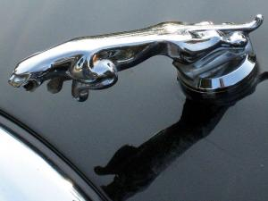 Jaguar salesman appears in court for conning customers